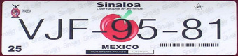 Sinaloa Mexico License Plate Placa European Euro sized