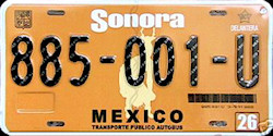 Sonora Mexico License Plate Placa commercial bus autobus publico