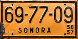 Sonora Mexico License Plate Placa taxi commercial bus autobus publico